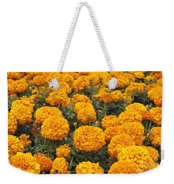 Field Of Orange Marigolds Weekender Tote Bag