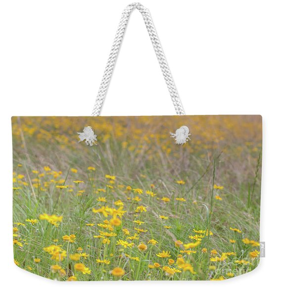 Field Of Yellow Flowers In A Sunny Spring Day Weekender Tote Bag