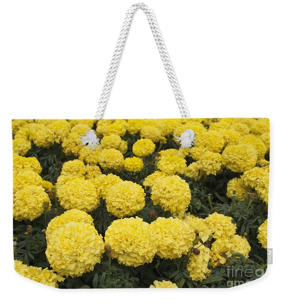 Field Of Yellow Marigolds Weekender Tote Bag
