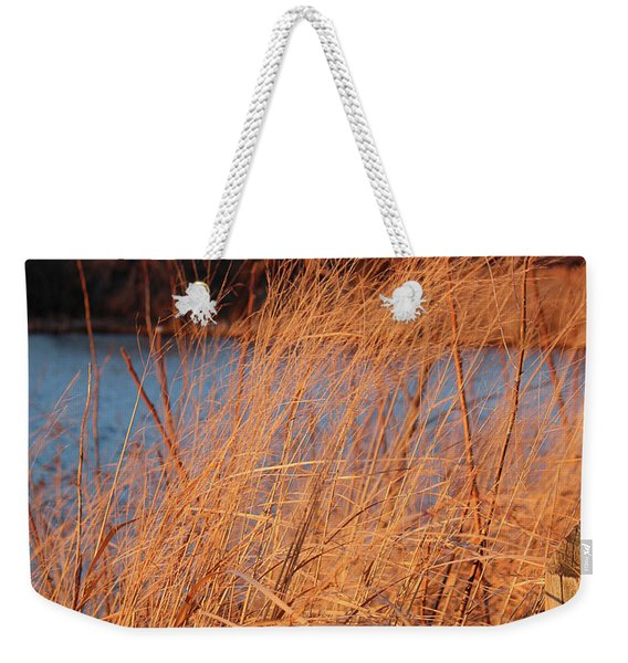 Amber Brush On The River Weekender Tote Bag