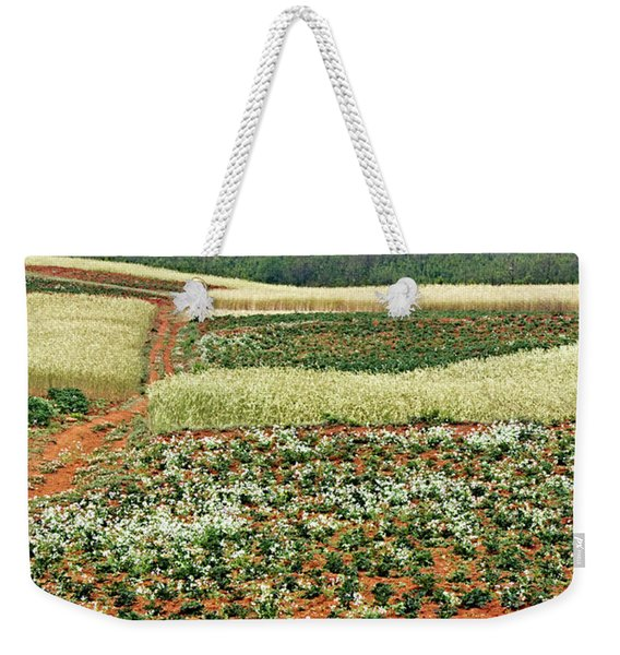 Fields Of The Redlands - 2 Weekender Tote Bag