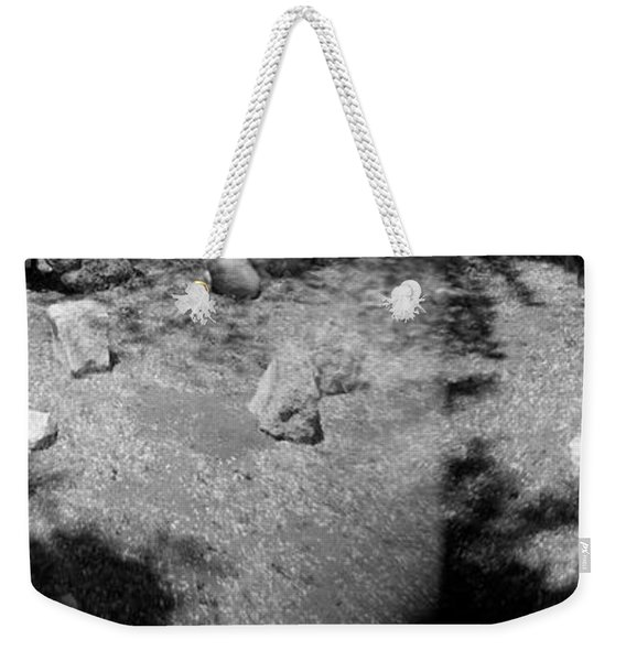 Weekender Tote Bag featuring the photograph Figurative Holga Tryptich 4 by Catherine Sobredo