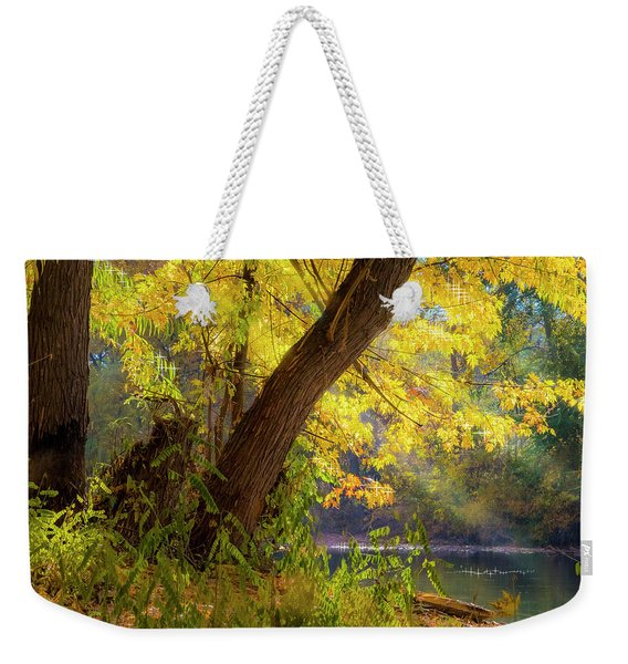 Filtered Light 2 Weekender Tote Bag