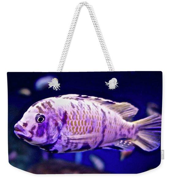 Calico Goldfish Weekender Tote Bag