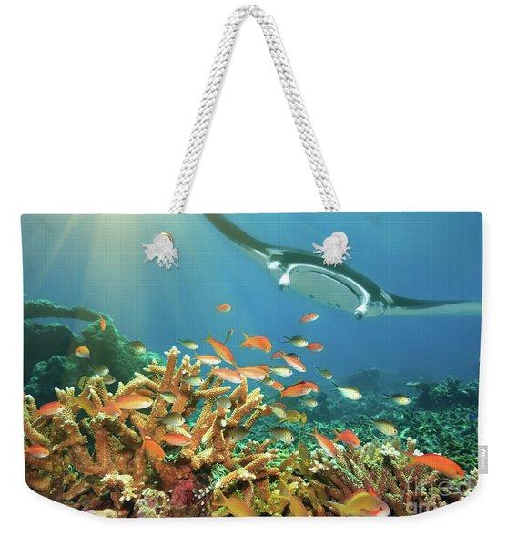 Fishes And Manta Ray Weekender Tote Bag
