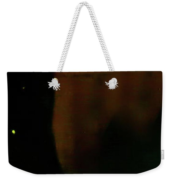 Weekender Tote Bag featuring the photograph Flamenco 37 by Catherine Sobredo