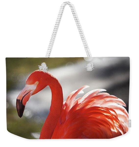Flamingo 2 Weekender Tote Bag