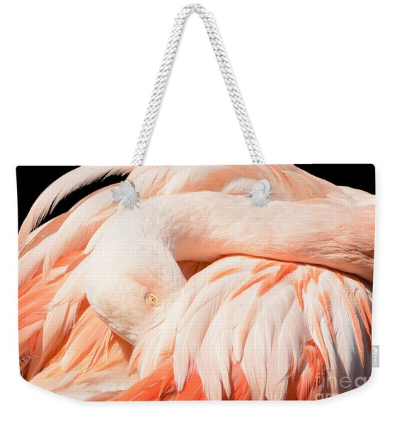 Flamingo Abstract Weekender Tote Bag