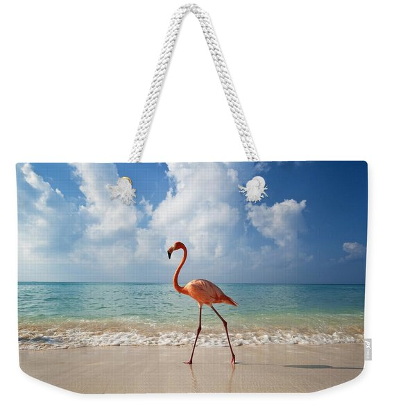 Flamingo Walking Along Beach Weekender Tote Bag