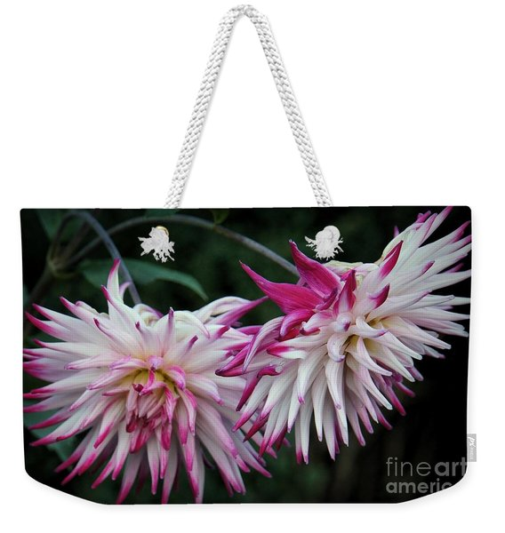 Weekender Tote Bag featuring the photograph Floral Explosion by Patricia Strand