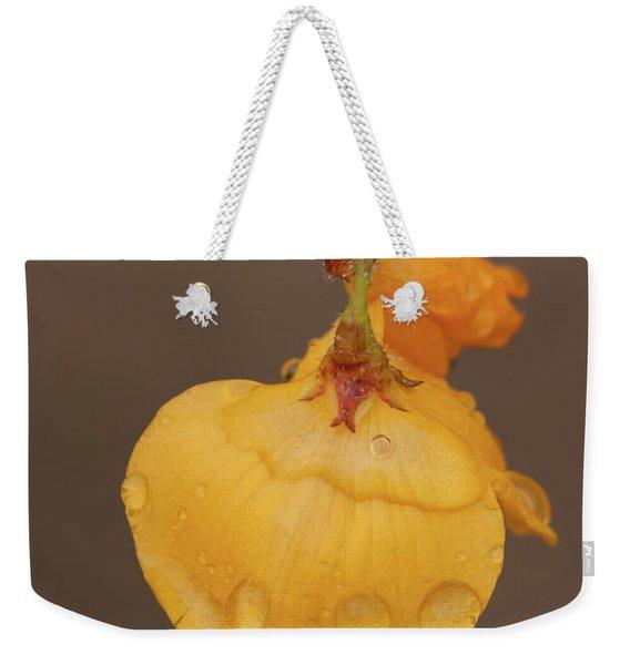 Florida Alicia Weekender Tote Bag