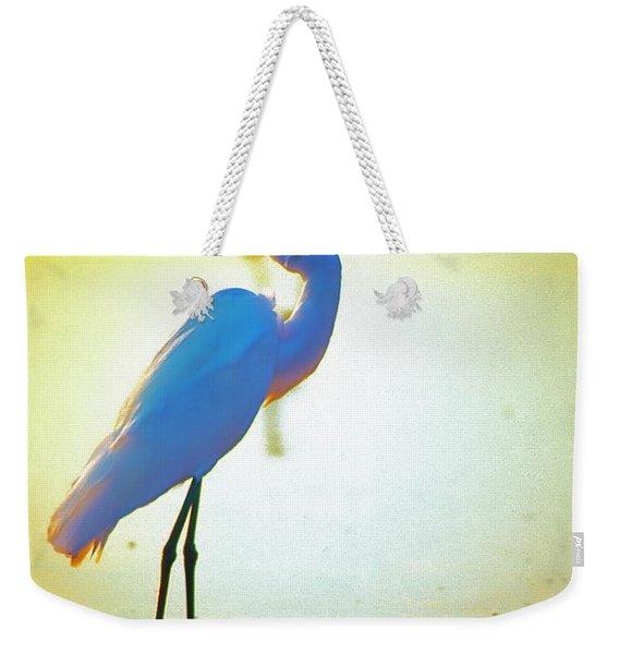 Florida Atlantic Beach Ocean Birds  Weekender Tote Bag