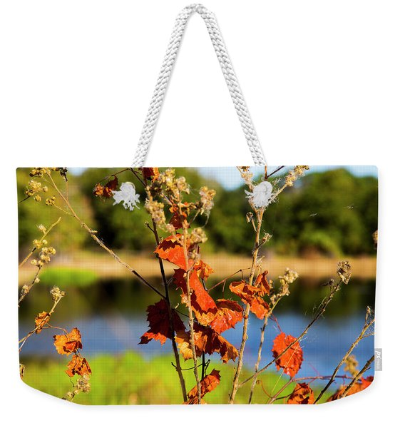 Florida Fall Leaves Weekender Tote Bag