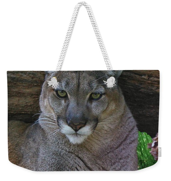 Florida Panther Weekender Tote Bag