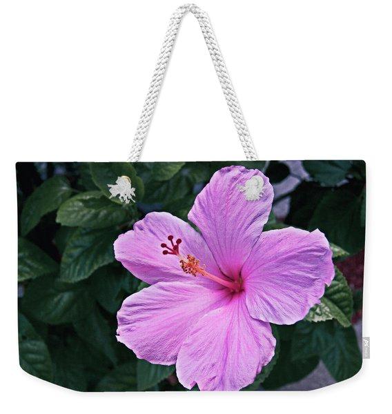 Florida Pink Hibiscus Weekender Tote Bag
