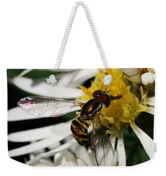 Weekender Tote Bag featuring the photograph Flower Fly On Wildflower by William Selander