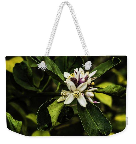 Flower Of The Lemon Tree Weekender Tote Bag
