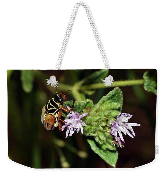 Flower Scarab - Trigonopeltastes Delta Weekender Tote Bag