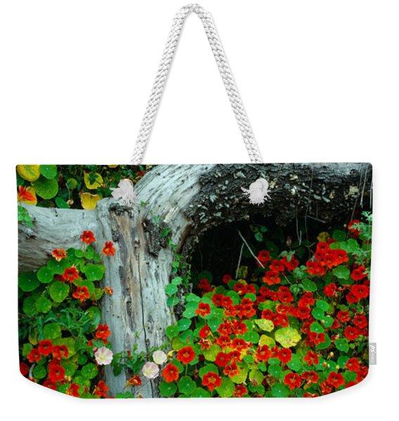 Flowers And Log, Route 1, Northern Weekender Tote Bag