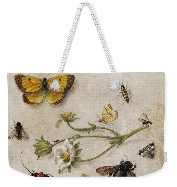 Flowers, Insects And Butterflies Weekender Tote Bag