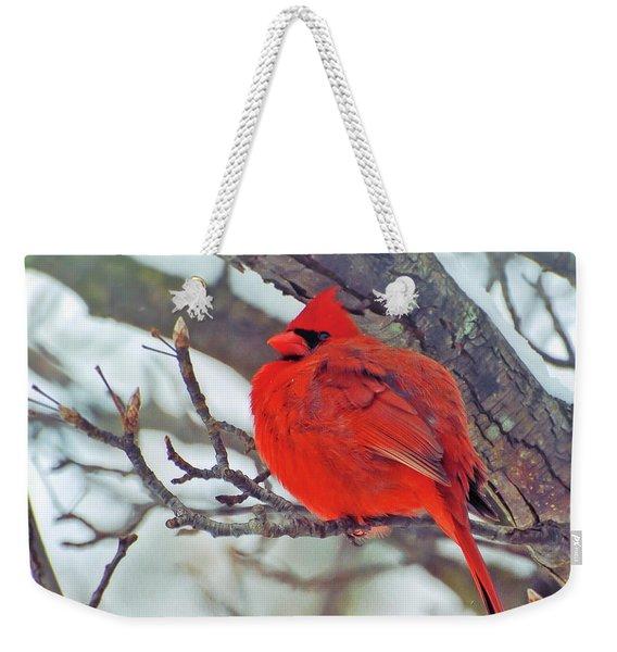 Fluffed Up Male Cardinal Weekender Tote Bag