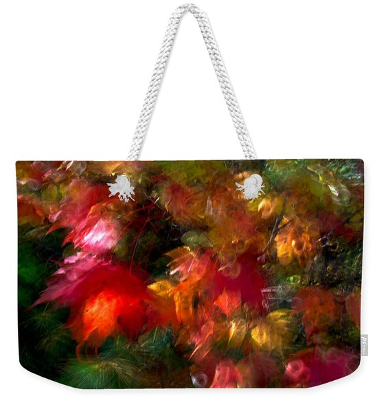 Weekender Tote Bag featuring the photograph Flury by Doug Gibbons