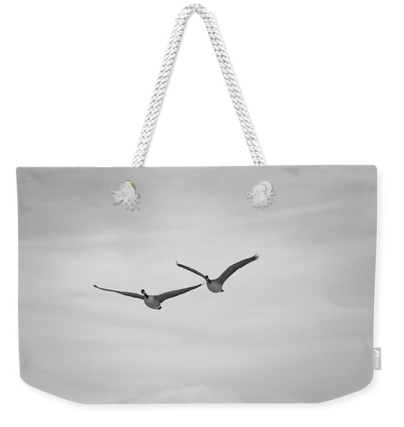 Weekender Tote Bag featuring the photograph Flying Companions by Jason Coward