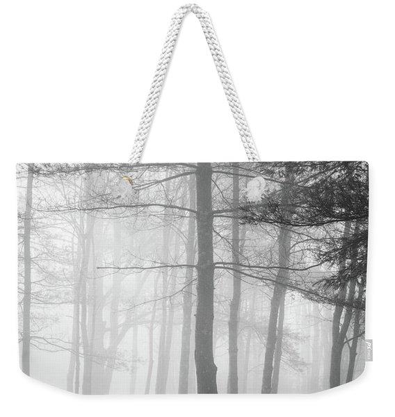 Foggy Ellacoya Weekender Tote Bag