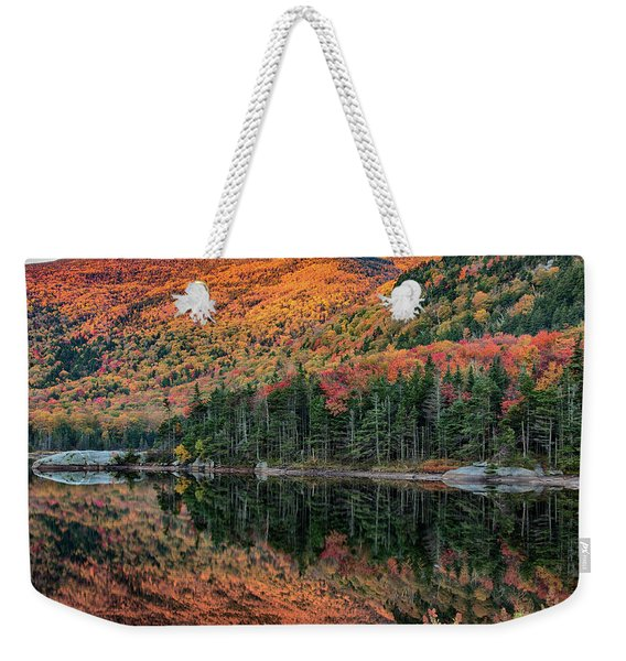 foliage at dawn on Beaver pond Weekender Tote Bag