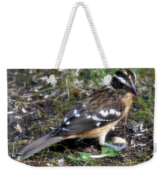 Foraging For A Meal Weekender Tote Bag