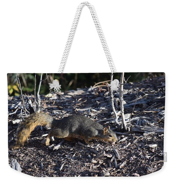 Squirrel Pprh Woodland Park Co Weekender Tote Bag
