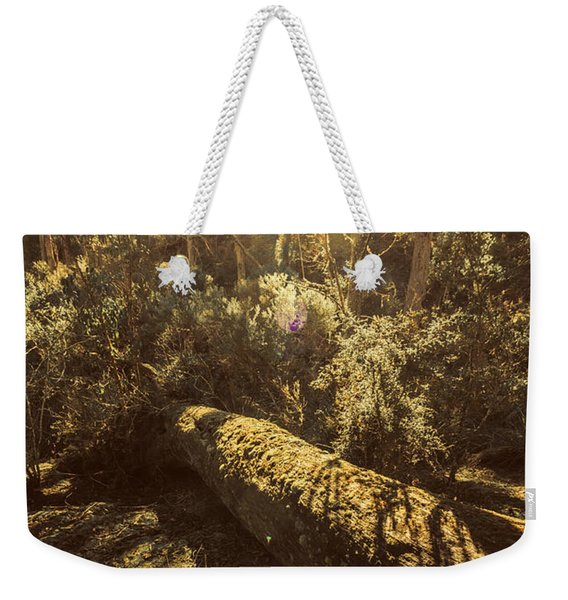 Forest In Fall Weekender Tote Bag
