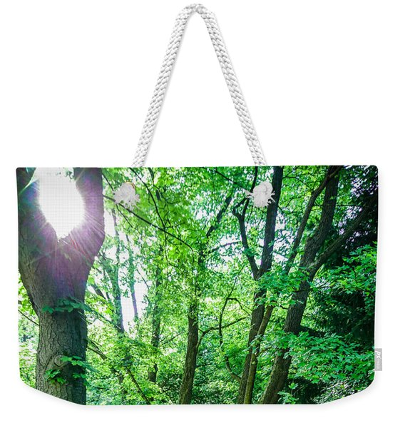 Weekender Tote Bag featuring the photograph Forest Path by Bee-Bee Deigner