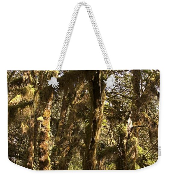 Forest Setting In Hoh Rain Forest Weekender Tote Bag