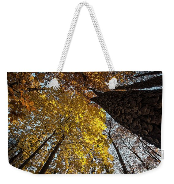Forest Trees-yellow-orange Weekender Tote Bag