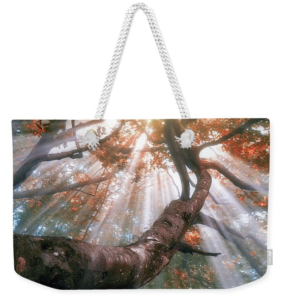 Forest With Fog And Sun Rays Weekender Tote Bag