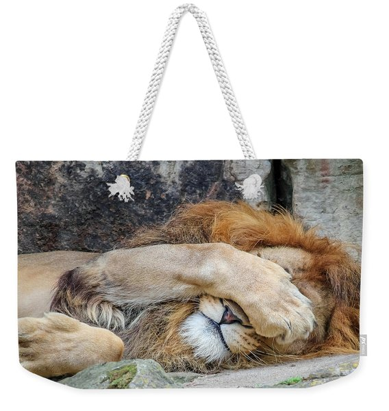 Fort Worth Zoo Sleepy Lion Weekender Tote Bag