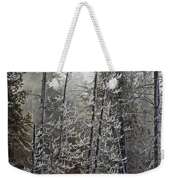 Fountain Paint Pots Shrouded In Snow And Ice Weekender Tote Bag