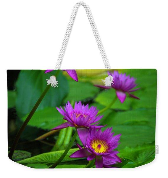 Four Waterlilies Weekender Tote Bag