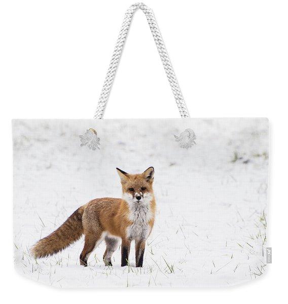 Fox 1 Weekender Tote Bag