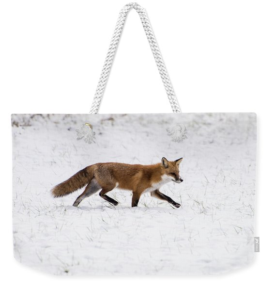 Fox 3 Weekender Tote Bag