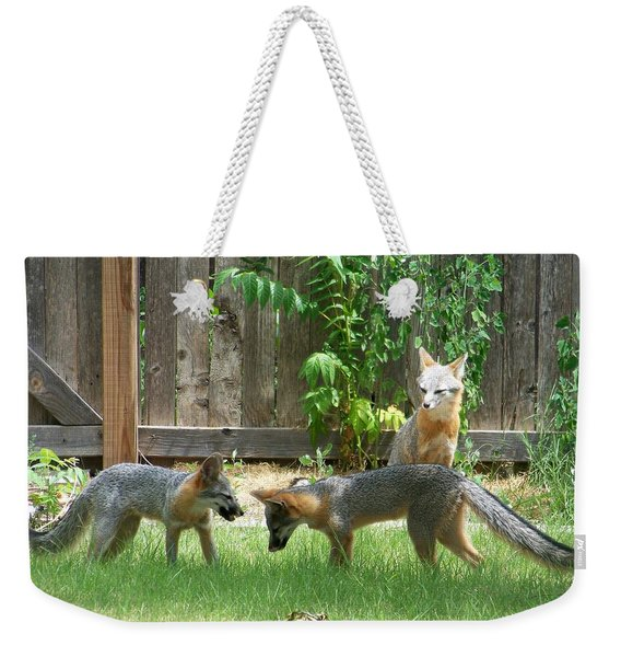 Weekender Tote Bag featuring the photograph Fox Family by Deleas Kilgore