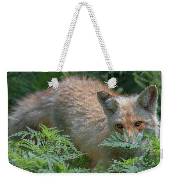 Fox In The Ferns Weekender Tote Bag
