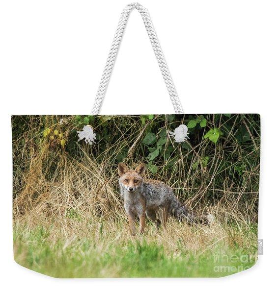 Fox In The Woods Weekender Tote Bag