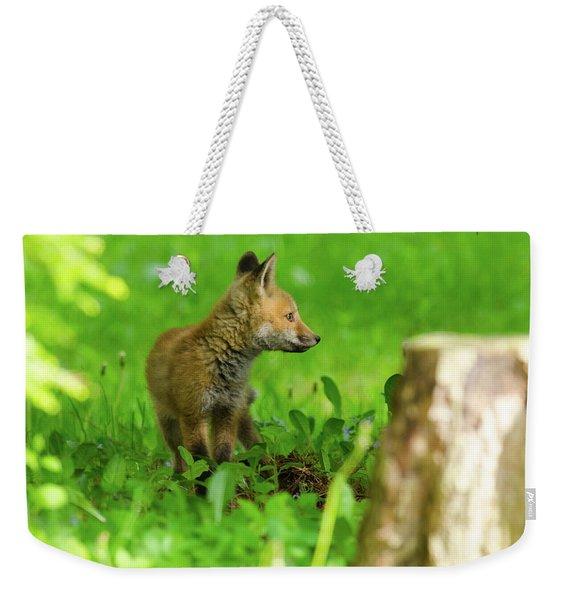 Fox Kit - 2 Weekender Tote Bag