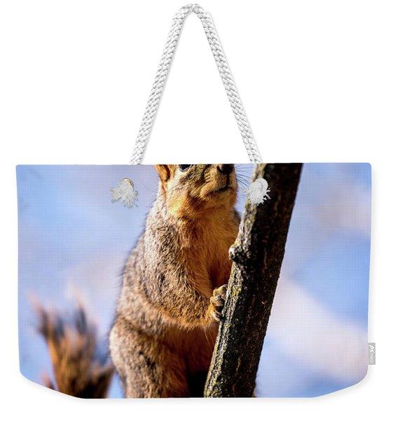 Fox Squirrel's Last Look Weekender Tote Bag