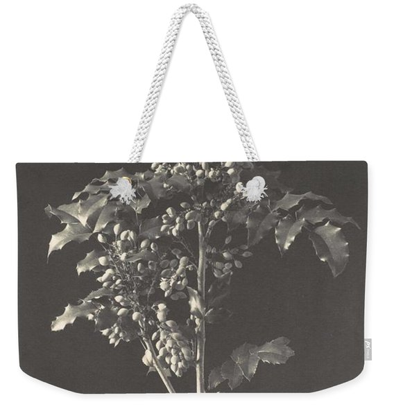Frederick H. Evans, British, London 1853-1943 London, A Stalk Of Berbery Weekender Tote Bag