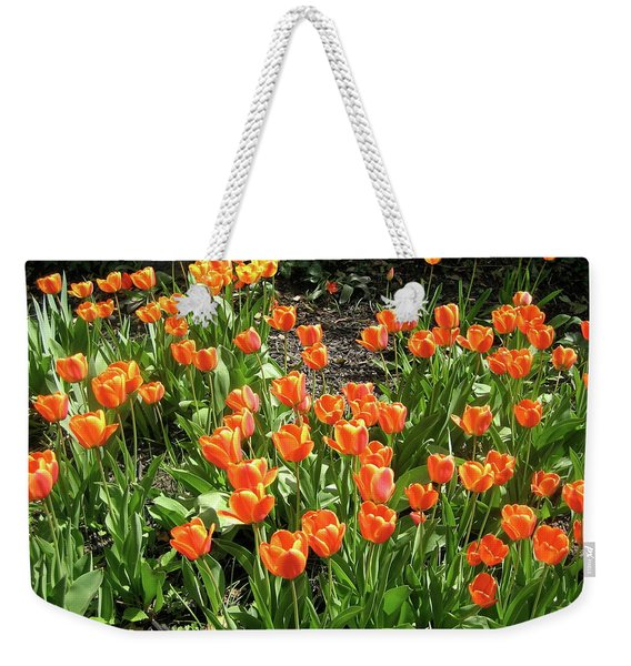 Weekender Tote Bag featuring the pyrography Fred's Garden by Michael Lucarelli