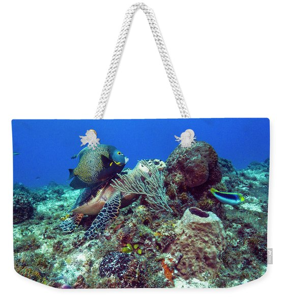 French Angelfish And The Green Turtle Weekender Tote Bag