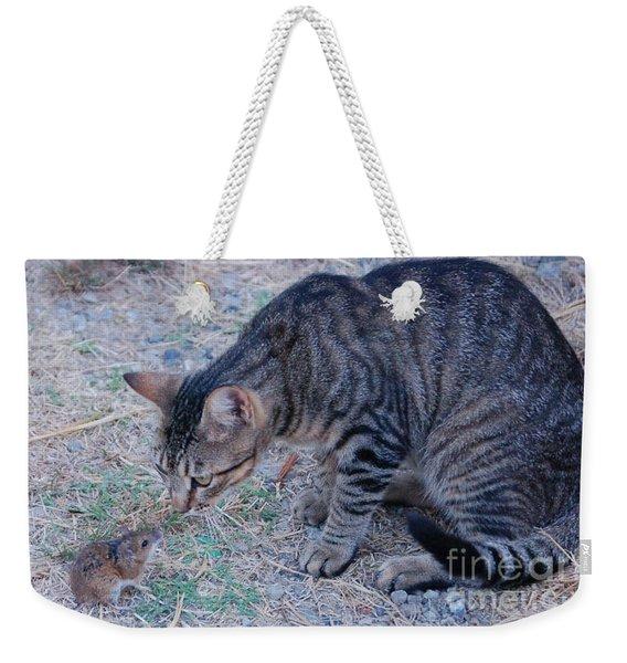 Friends Or Enemies  Weekender Tote Bag